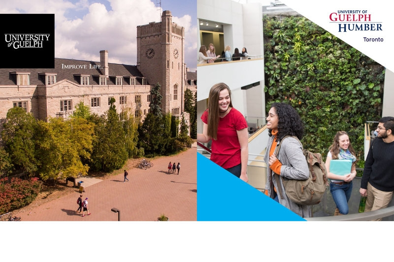 Experience Campus Virtually